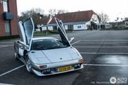 Spot van de dag: spoilerloze Lamborghini Diablo