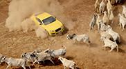 Top Gear geeft preview nieuwe aflevering