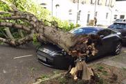 Aston Martin V8 Vantage verliest van moeder natuur