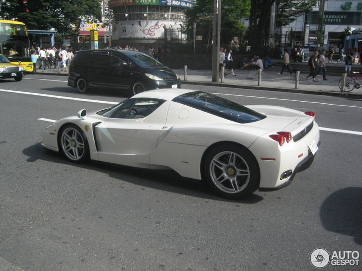 Spotted Unique White Ferrari Enzo Ferrari