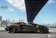 Beautiful spot of a Lamborghini Aventador Roadster