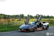 Wundervolle Fotos eines Lamborghini Murciélago LP650-4 Roadster