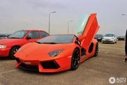 Spot van de dag: Lamborghini Aventador in Willemstad