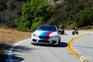 BMW M6 shows its colours