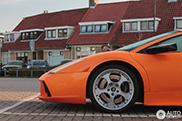 Spot van de dag: Lamborghini Murciélago