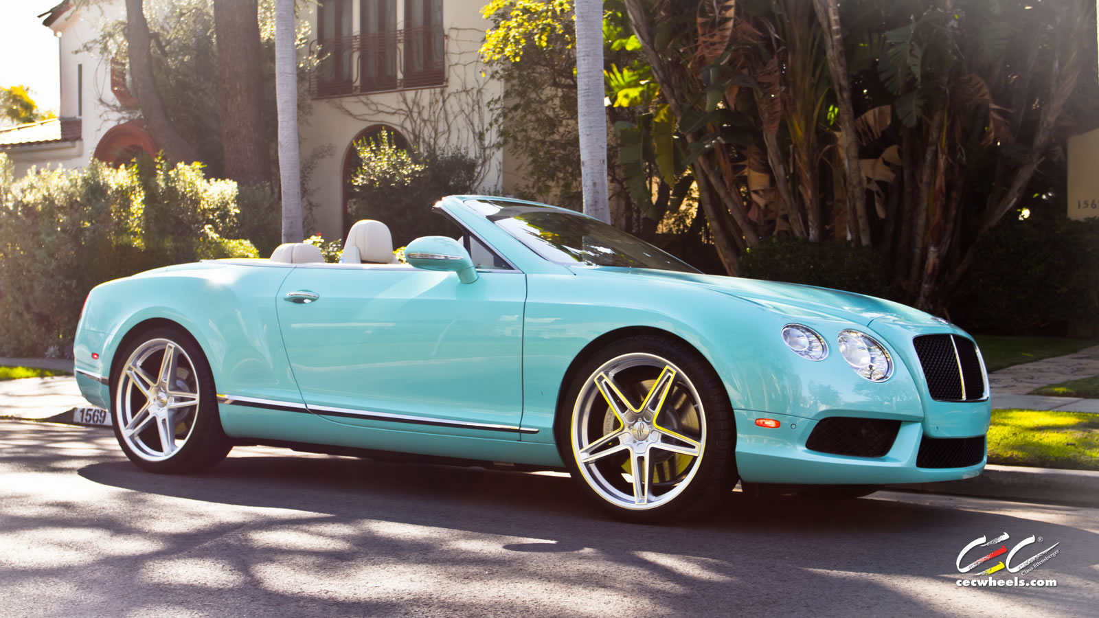 Flashy Colours Bentley Continental Gtc V8