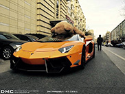 Un propriétaire lie son ours en peluche sur le toit de sa Lamborghini