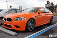 BMW M5 F10 em cor-de-laranja: Hot or Not?