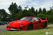 Daredevil: with your Ferrari F40 to the Nürburgring