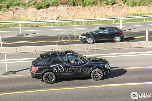 Bentley Bentayga laat zijn profiel goed zijn