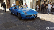 Spotted: beautiful Alfa Romeo Disco Volante Spyder