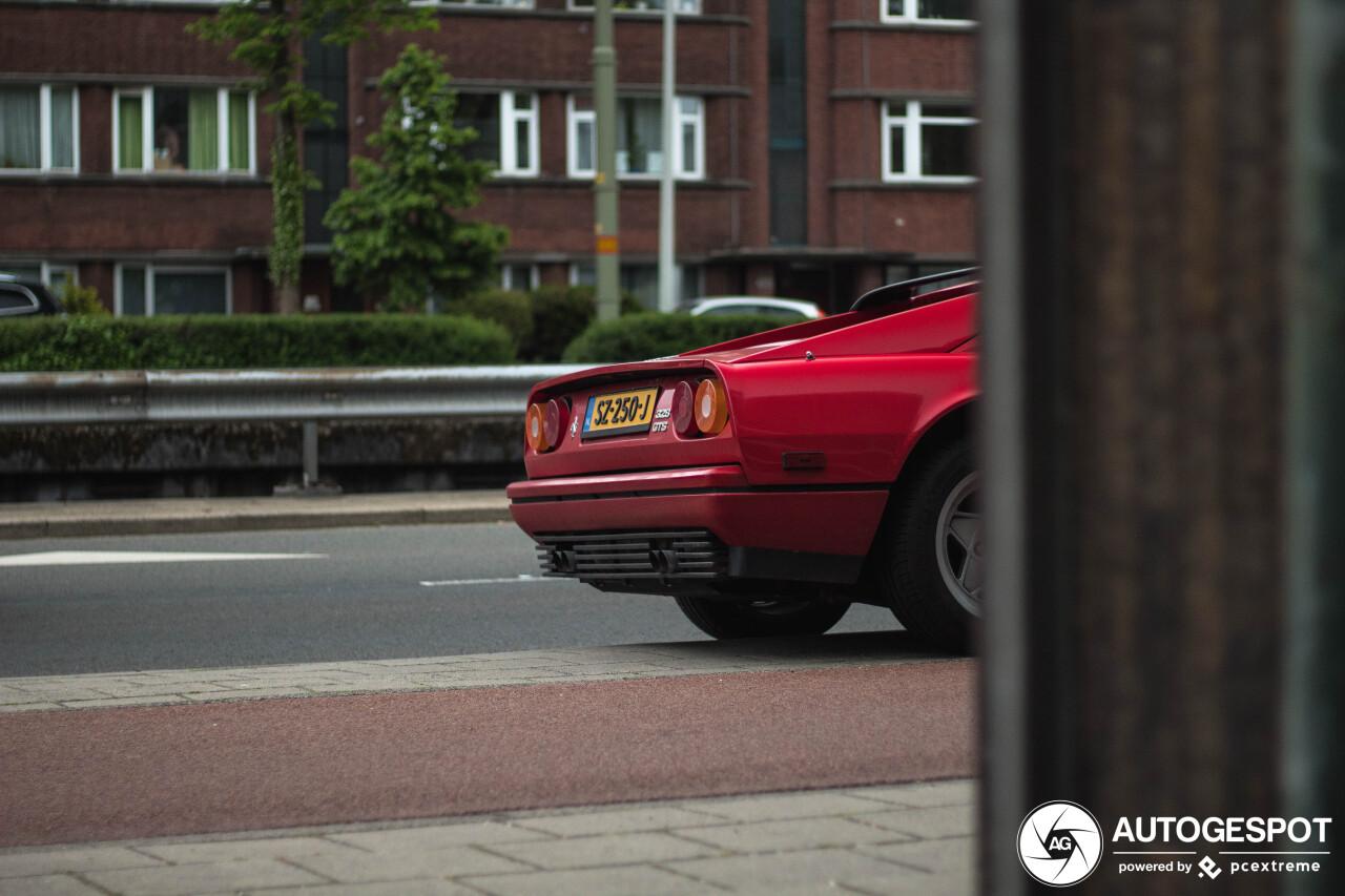 Klassiek kontje straalt in Den Haag
