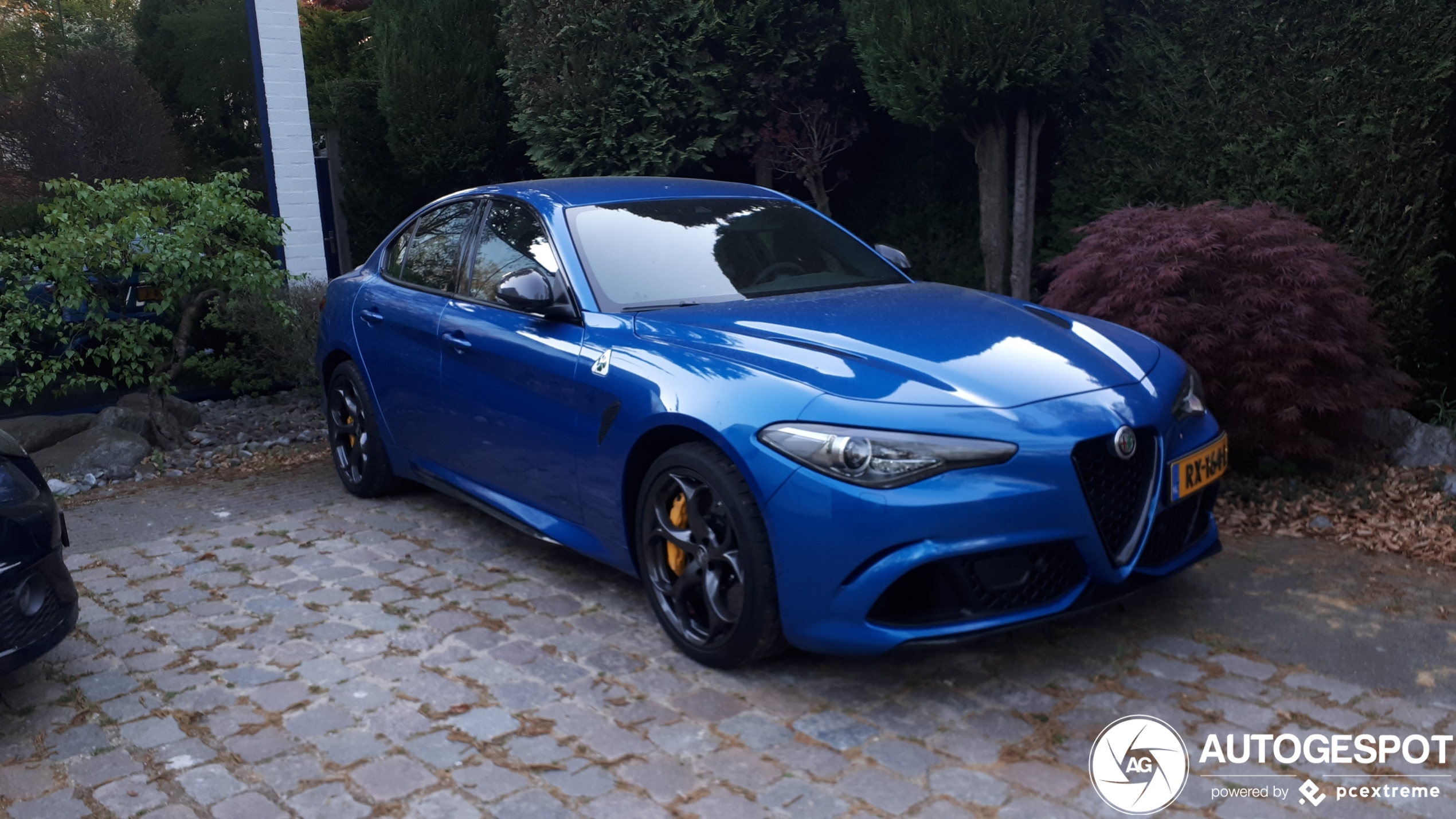 Alfa Romeo Giulia Q heeft een onconventionele kleur gekregen