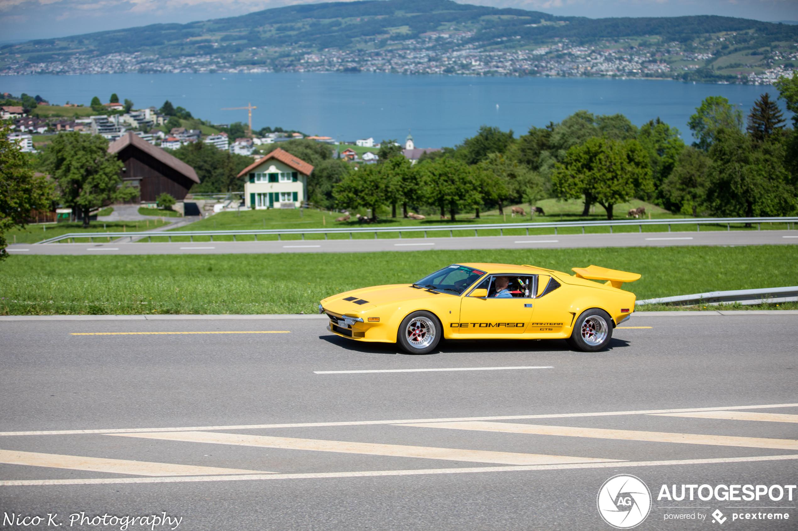 De Tomaso Pantera GTS is een Countach-light