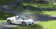 Bugatti Veyron 16.4 Grand Sport eats grass