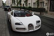 Bugatti Veyron 16.4 Grand Sport 'Wei Long' Tại Châu Âu