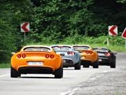 Un inesperado grupo de Lotus en medio de la nada