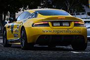 Autogespot učestvuje na Rogue Rallyu