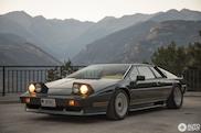 Photo Shoot: Lotus Turbo Esprit